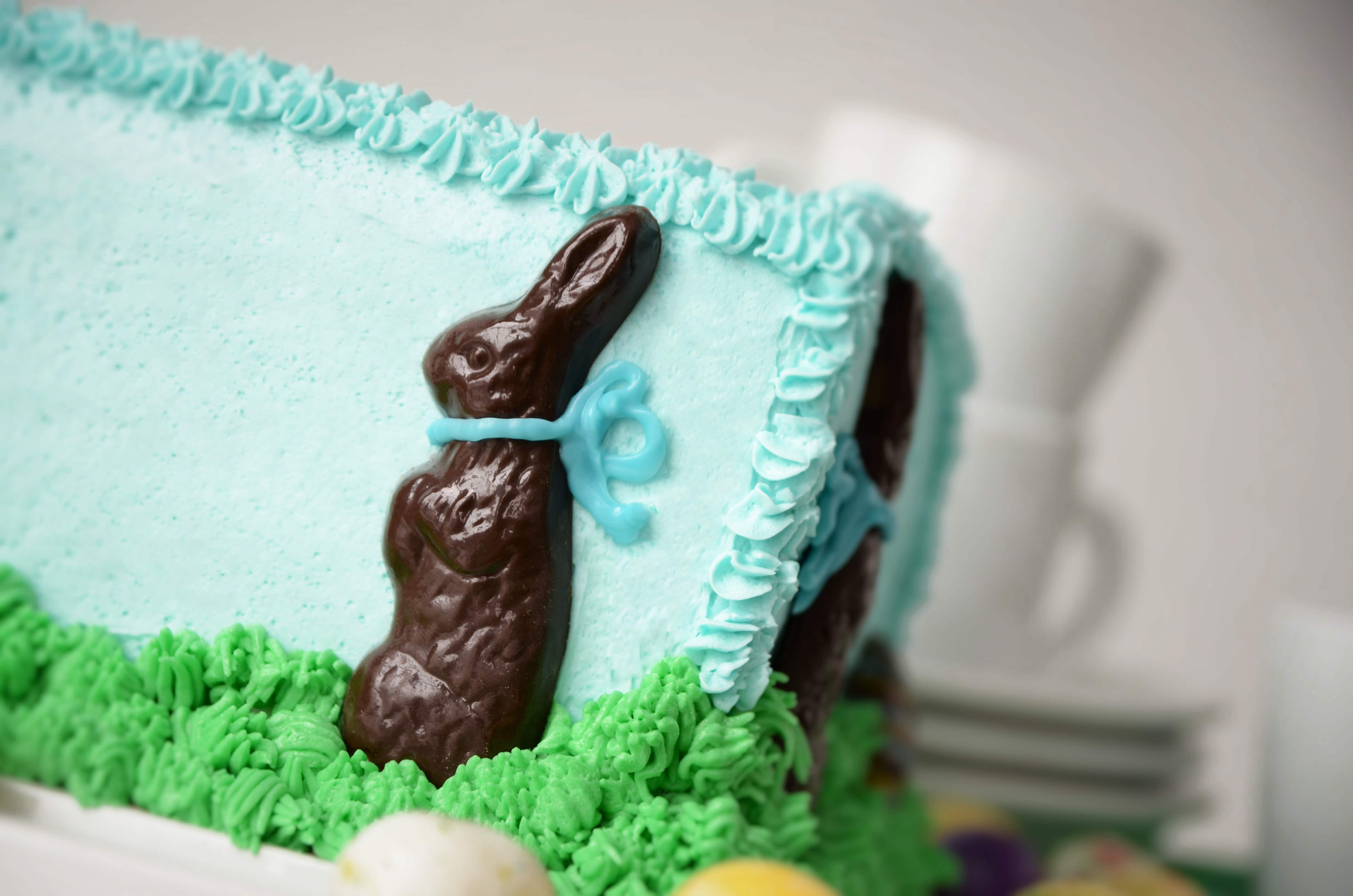 Chocolate Bunny in Grass Cake Bunny Closeup2 - Chocolate Easter Bunny Cake