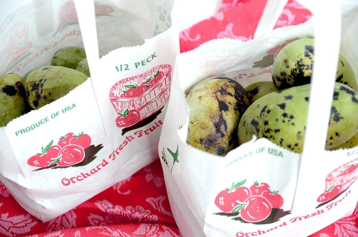 Bags of Pawpaws Web - Creamy Vegan Pawpaw Smoothie