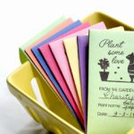 Colorful Seed Packages in Berry Basket 150x150 - Christmas Gnome Craft