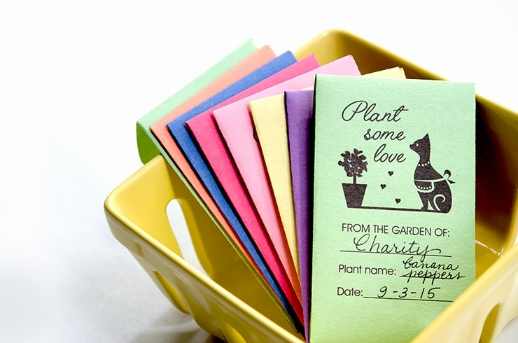 Colorful Seed Packages in Berry Basket 740 - Seed Saving 101