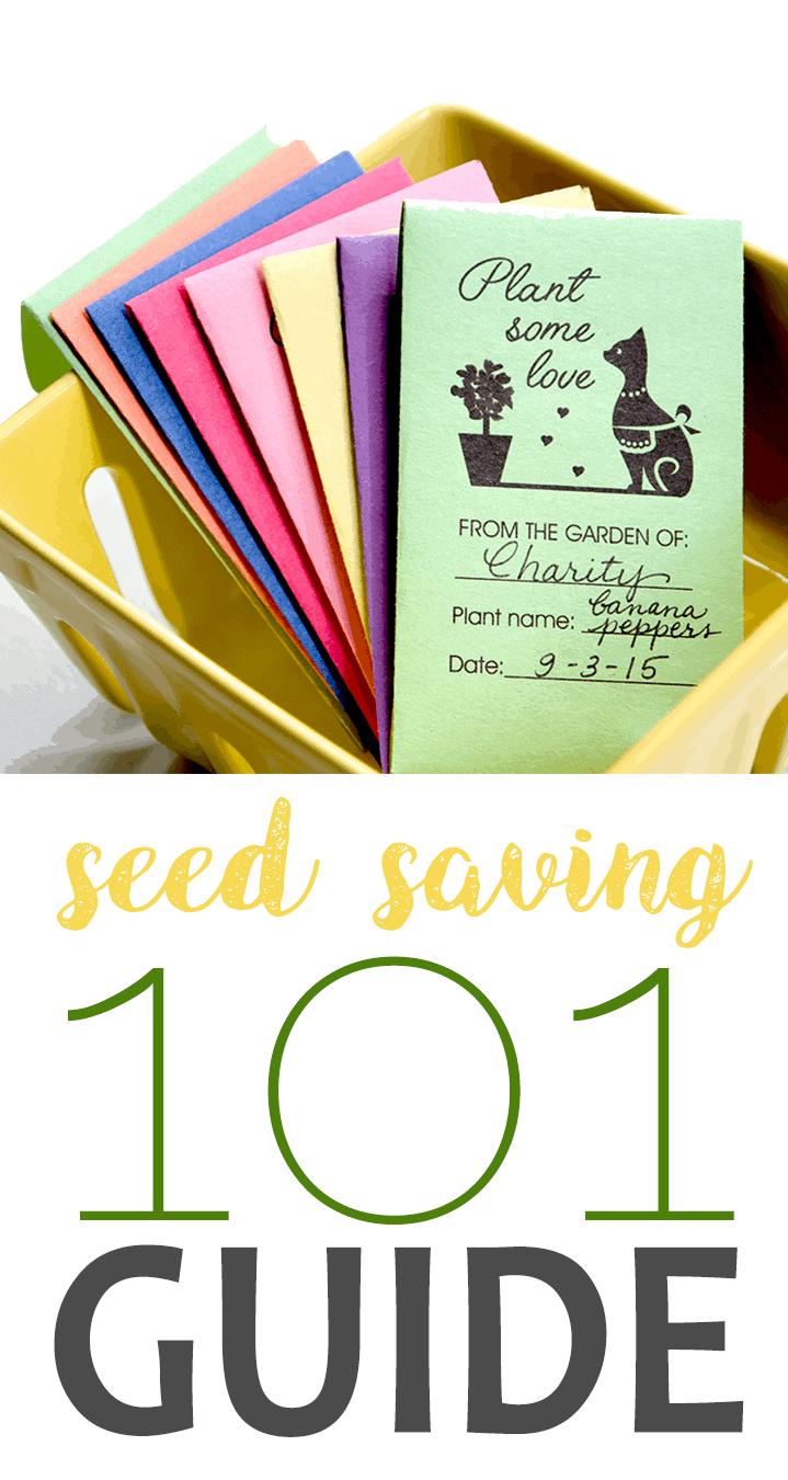 Seed Saving - Seed Saving 101