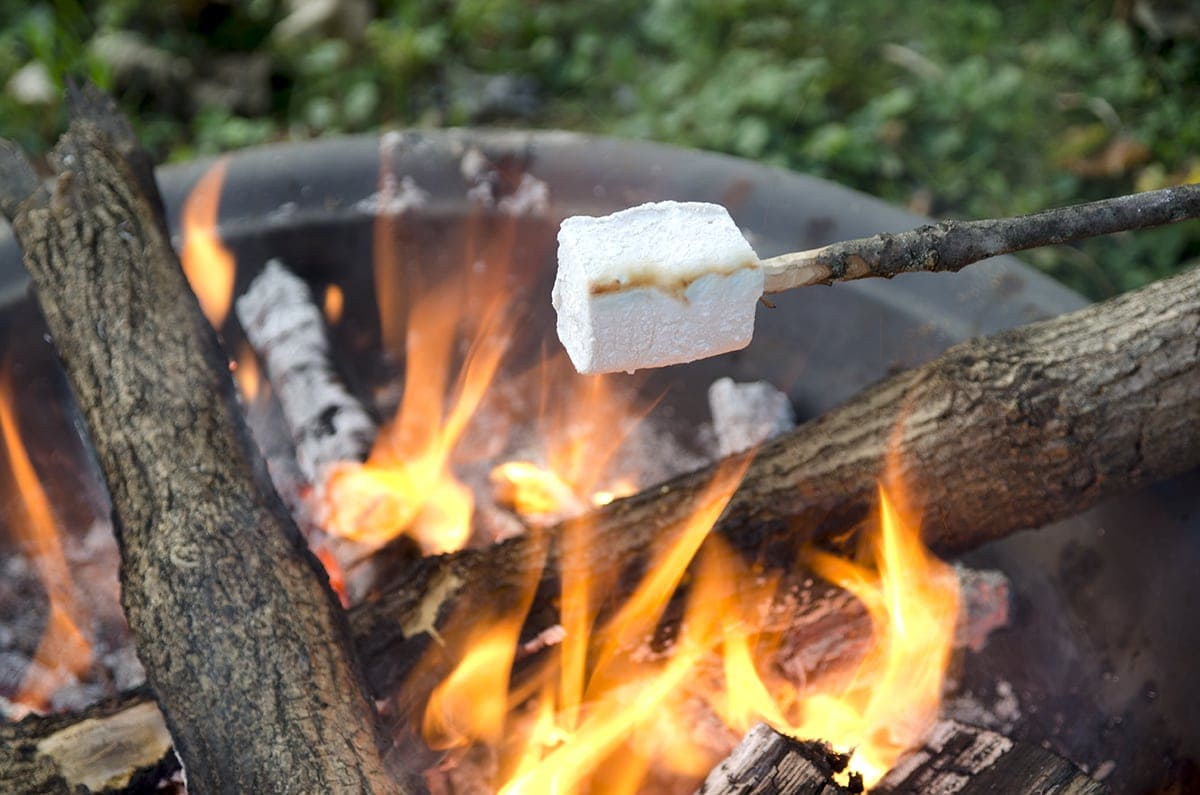 Roasting Marshmallow Web - Hickory Marshmallow S'mores with Lindt Chocolate