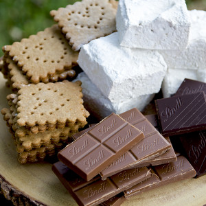 Smores fixings Web 300x300 - Hickory Marshmallow S'mores with Lindt Chocolate