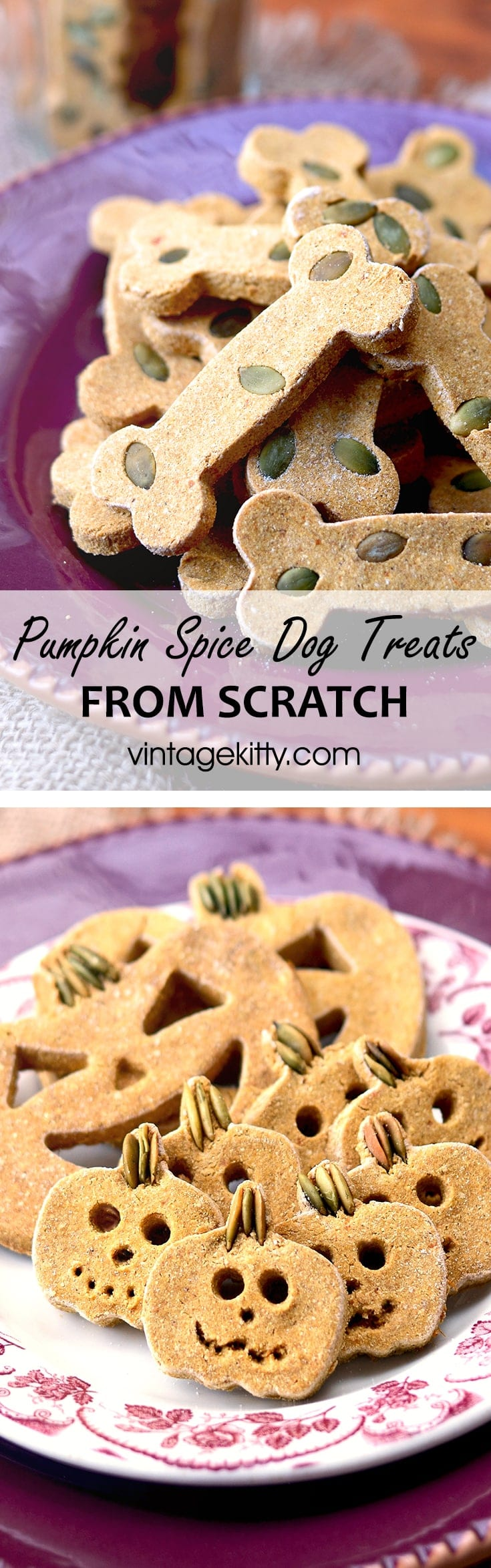 Pumpkin Spice Dog Treats Pin - Pumpkin Spice Dog Treats     ***Gluten Free!***