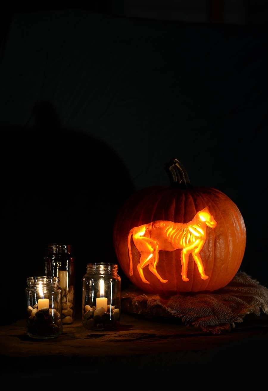 Skeleton Cat Pumpkin Web - Skeleton Cat Printable </br>Pumpkin Carving Pattern