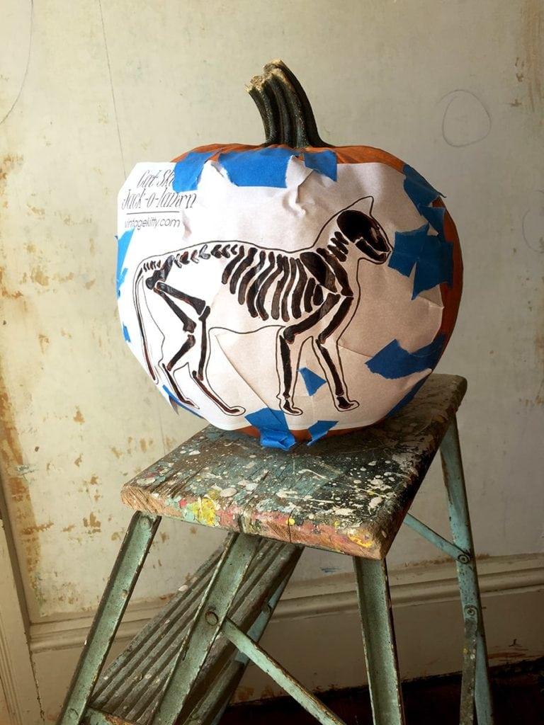 Template on Pumpkin 768x1024 - Skeleton Cat Printable </br>Pumpkin Carving Pattern