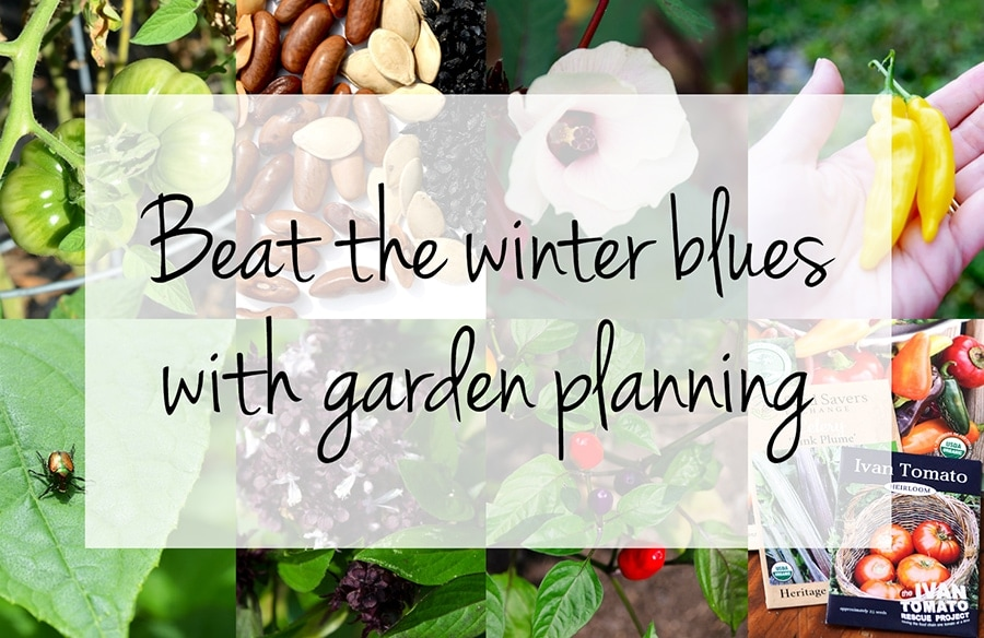 Horizontal Collage with Overlay - Beat the winter blues with garden planning