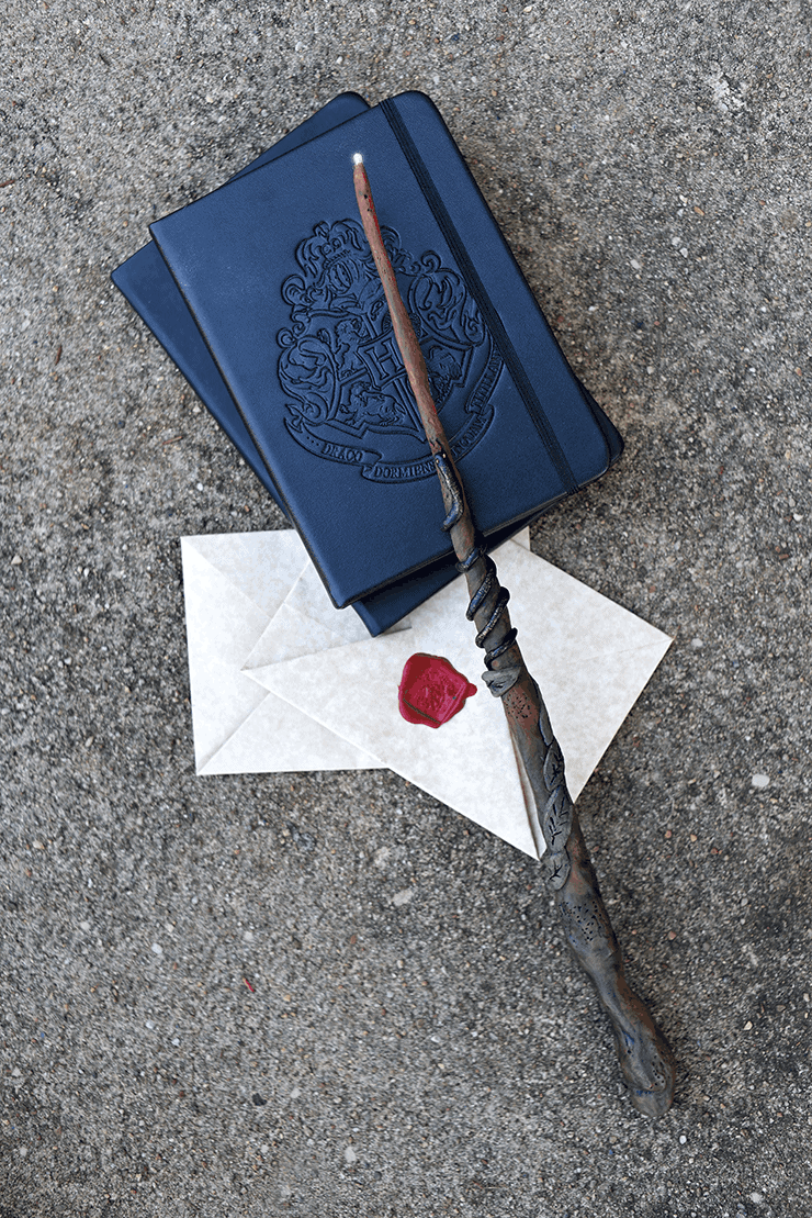 A Hogwarts book , parchment letters sealed with wax, and a handmade Harry Potter inspired wand with a snake wrapped around it and a lighted tip.