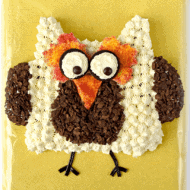 Owl Cut Up Cake