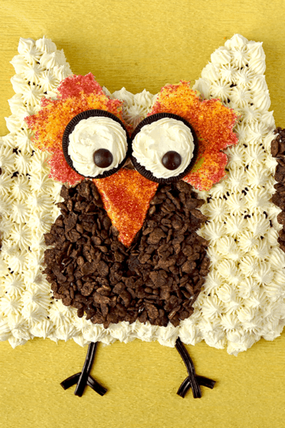 Owl Cut-Up Cake