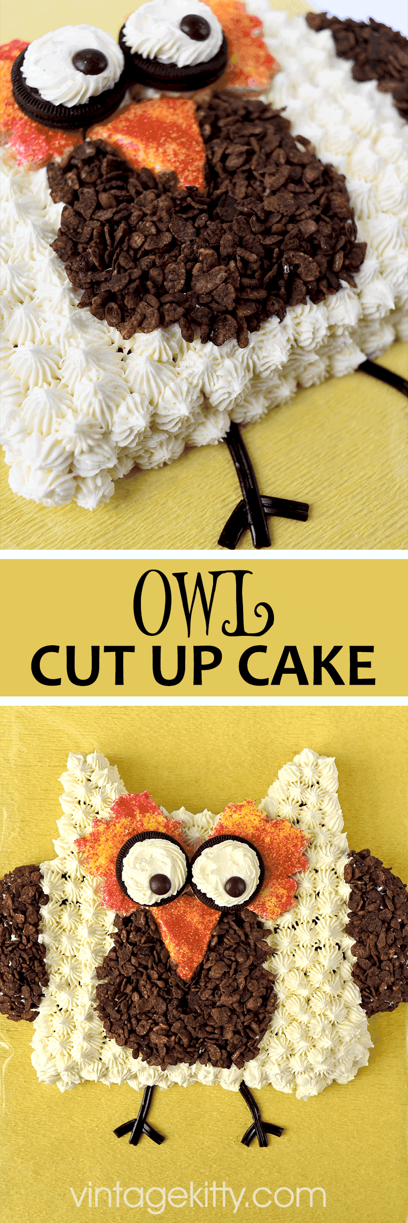 Owl Cut Up Cake Pin - Owl Cut Up Cake
