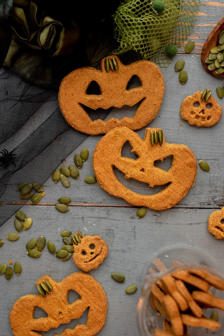 closeup of pumpkin spice dog treats shaped like halloween pumpkins