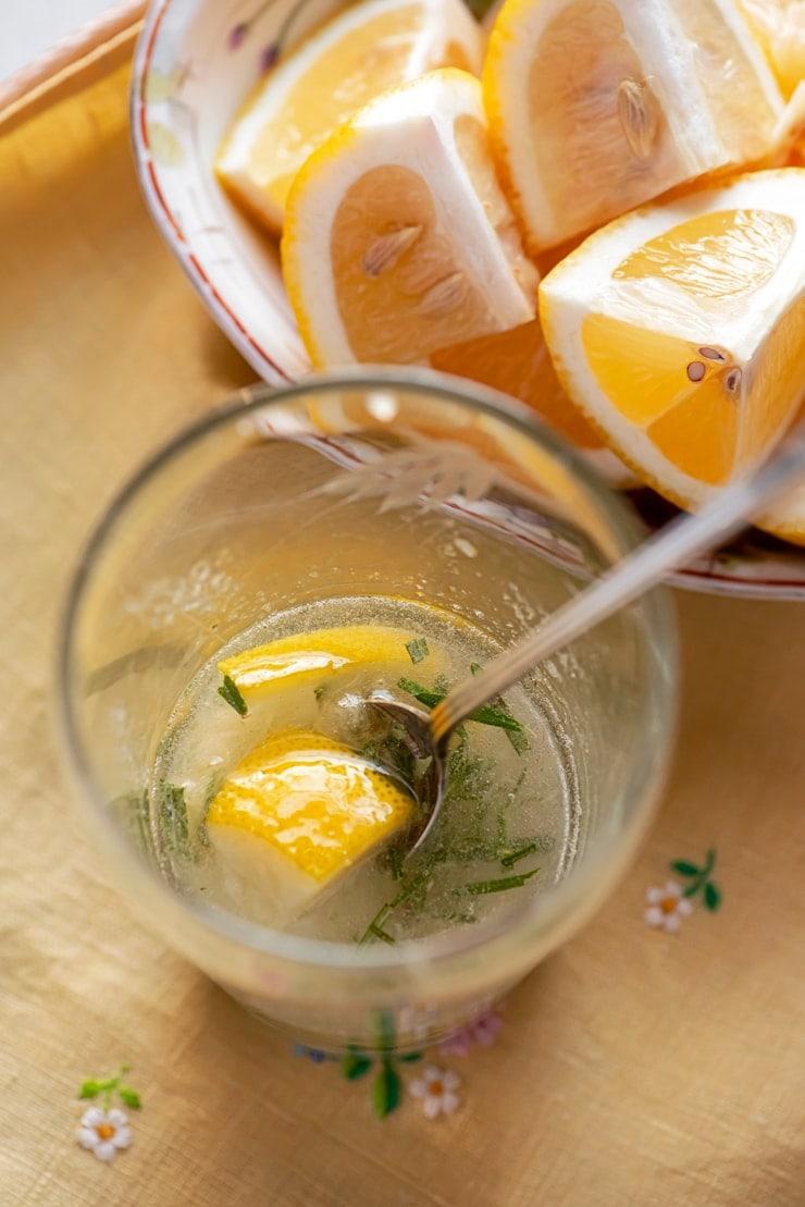 Rosemary Lemon Vodka Fizz 4917 Web - Rosemary Lemon Vodka Fizz
