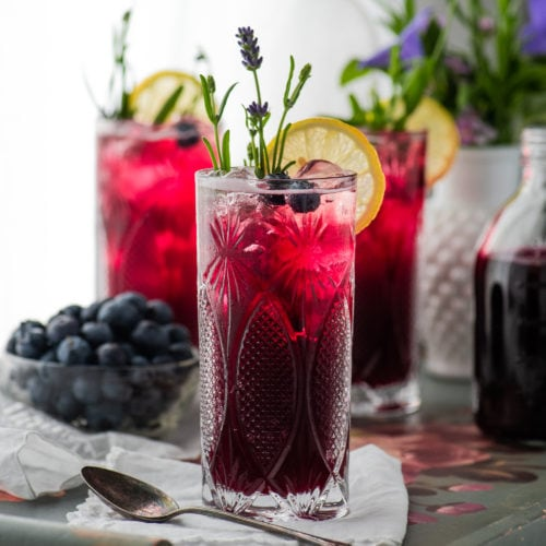Blueberry Lavender Soda 6905 500x500 - Blueberry Lavender Soda