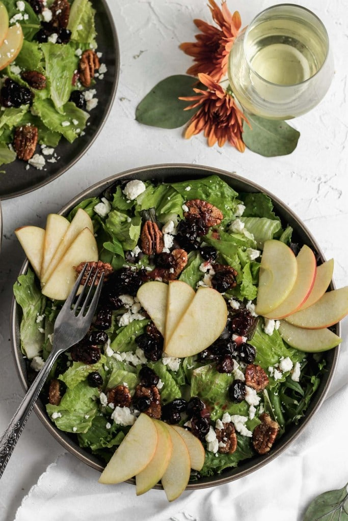 Cranberry Apple Salad 12 - Mouthwatering Thanksgiving Menu Ideas